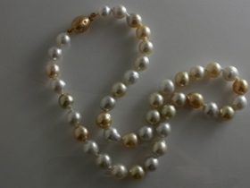 £1510 South Sea pearls